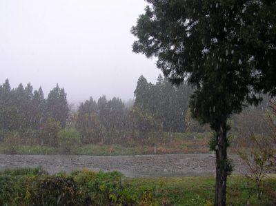 新潟県南魚沼市の初雪