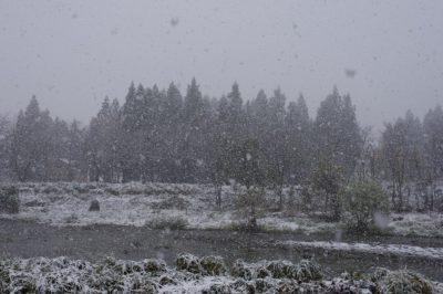 冬本番の水無川